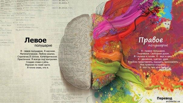 Для мозгов тесты