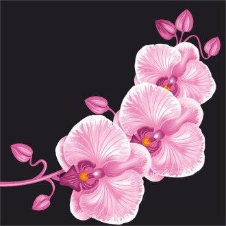"""""""Орхидеи на черном фоне"""" цена за 1 кв. м."""