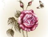 """Красивая роза № 2"" цена за 1 кв. м."