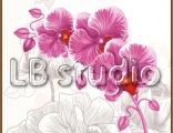 Орхидея стр. 12